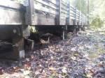 Fennel Creek Trail