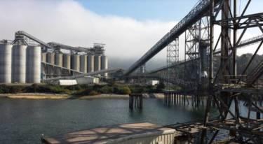 Port of Kalama Grain Terminal